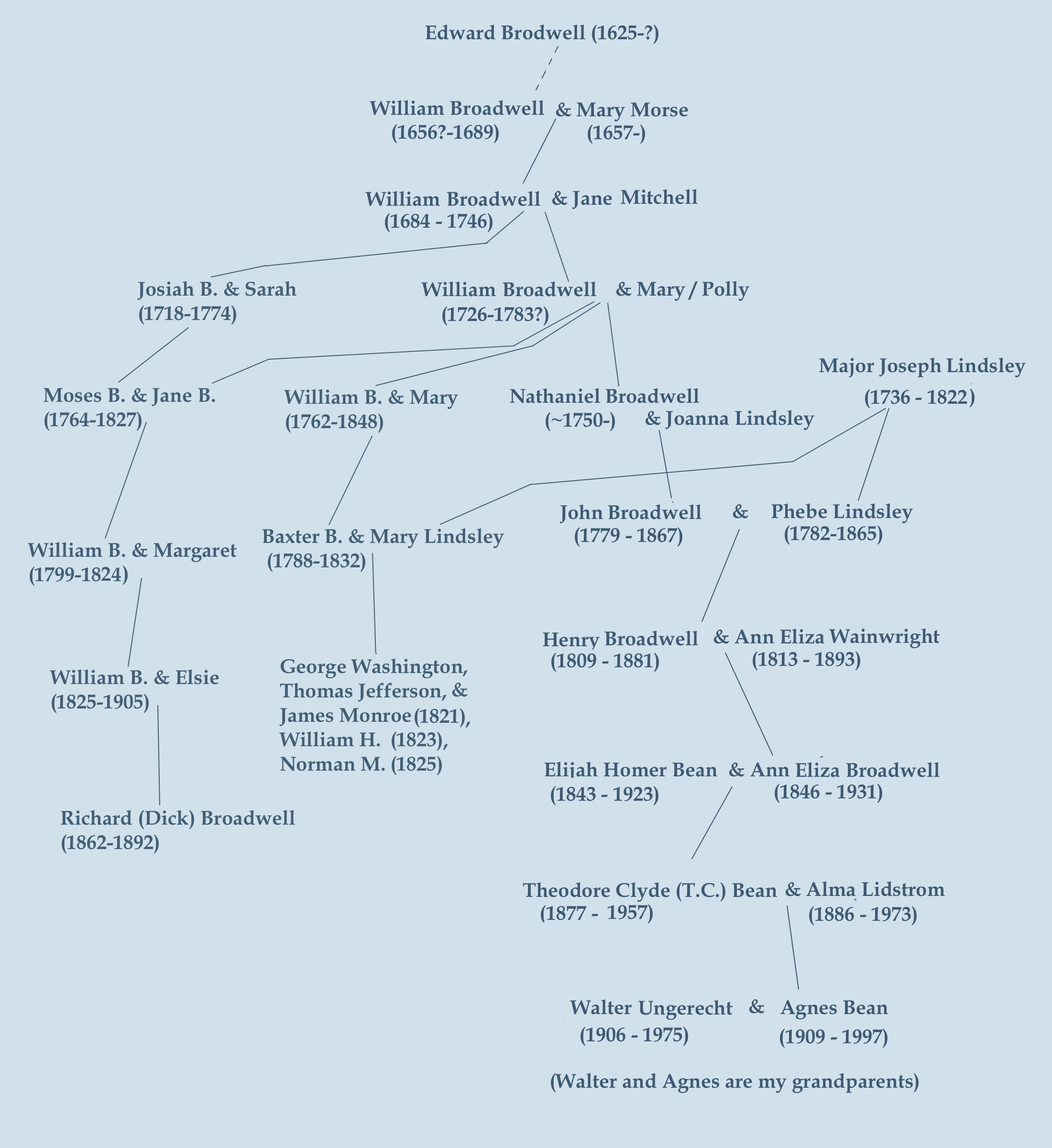 family tree overview